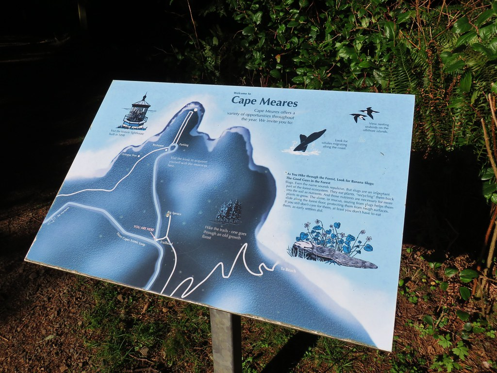 Cape Meares Trail map