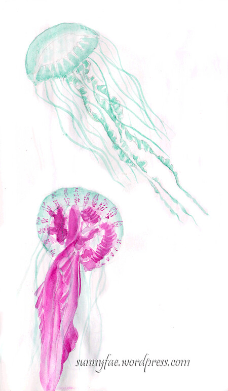 pink and blue jellyfish sketch