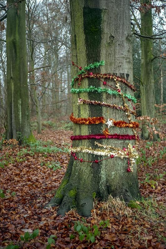 FILM - Christmas tree