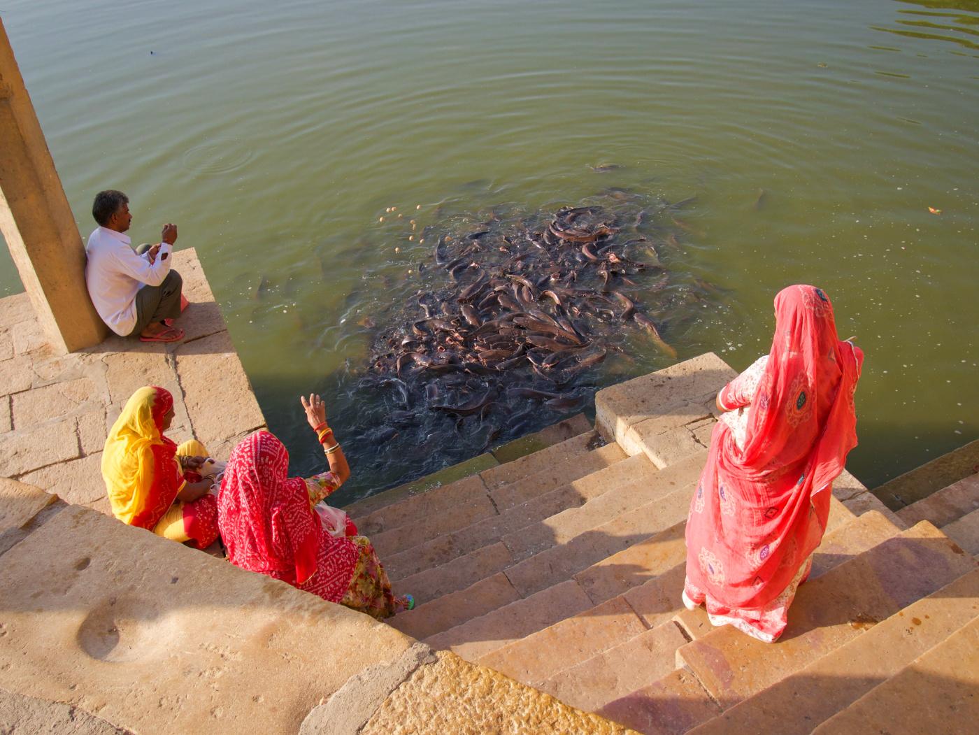 526-India-Jaisalmer