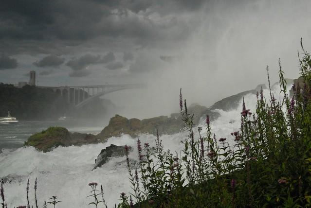 flowers in niagara falls, Nikon D200, AF Zoom-Nikkor 28-80mm f/3.5-5.6D