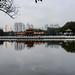 Guangdong Shenzhen