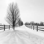 Amish Farm in Winter