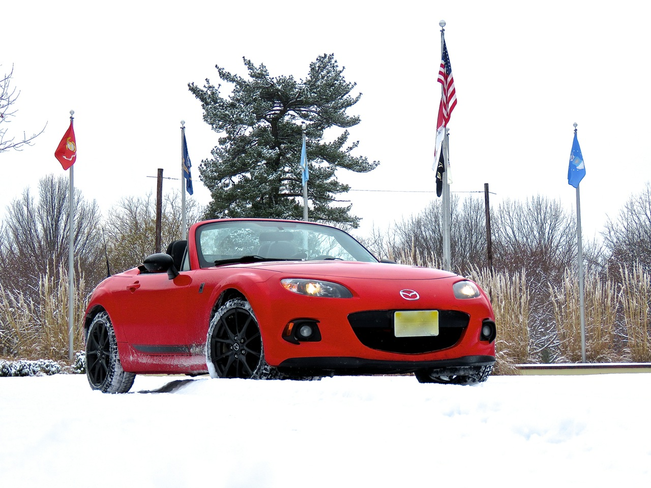 Miata Club Ace Snow 6