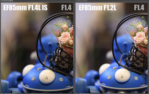 EF85mm F1.4L IS vs EF85mm F1.2L_09
