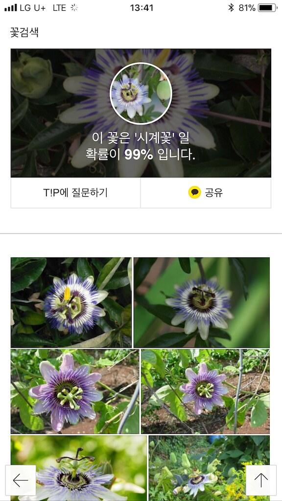 koreanapps-flowersearch23