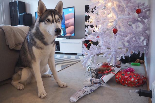 bamse ja lahjat