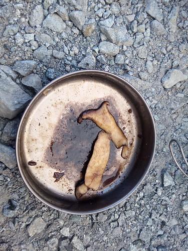 まっちゃんが作ってくれたキノコのガーリック炒めの食べかす