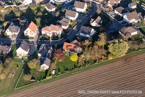 Schleithal (0.60 km South-West) - IMG_104394