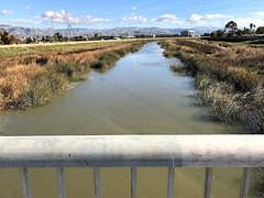 KingTide_Alviso_Dec2017_3