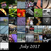 365 Mosaic - July 2017