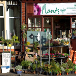 Charity flower shop in Preston