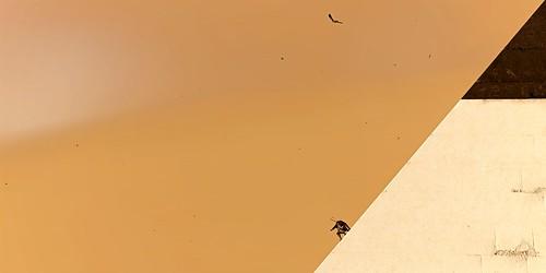 """Sliding Down The Pyramid"" | Assassin's Creed Origins ..."