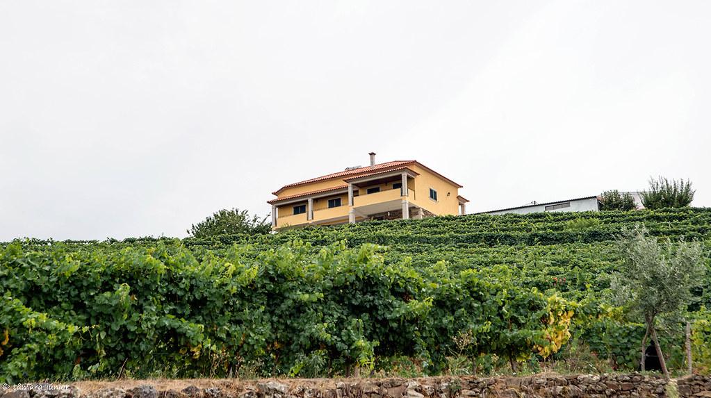 207.- Anos Angélica (Quinta Barroca-Amares) (137)