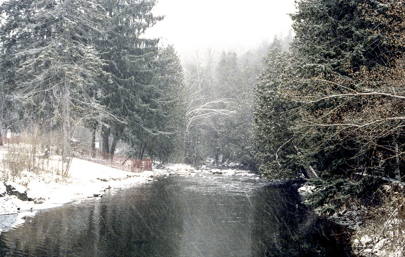 West Credit River in the Flurries