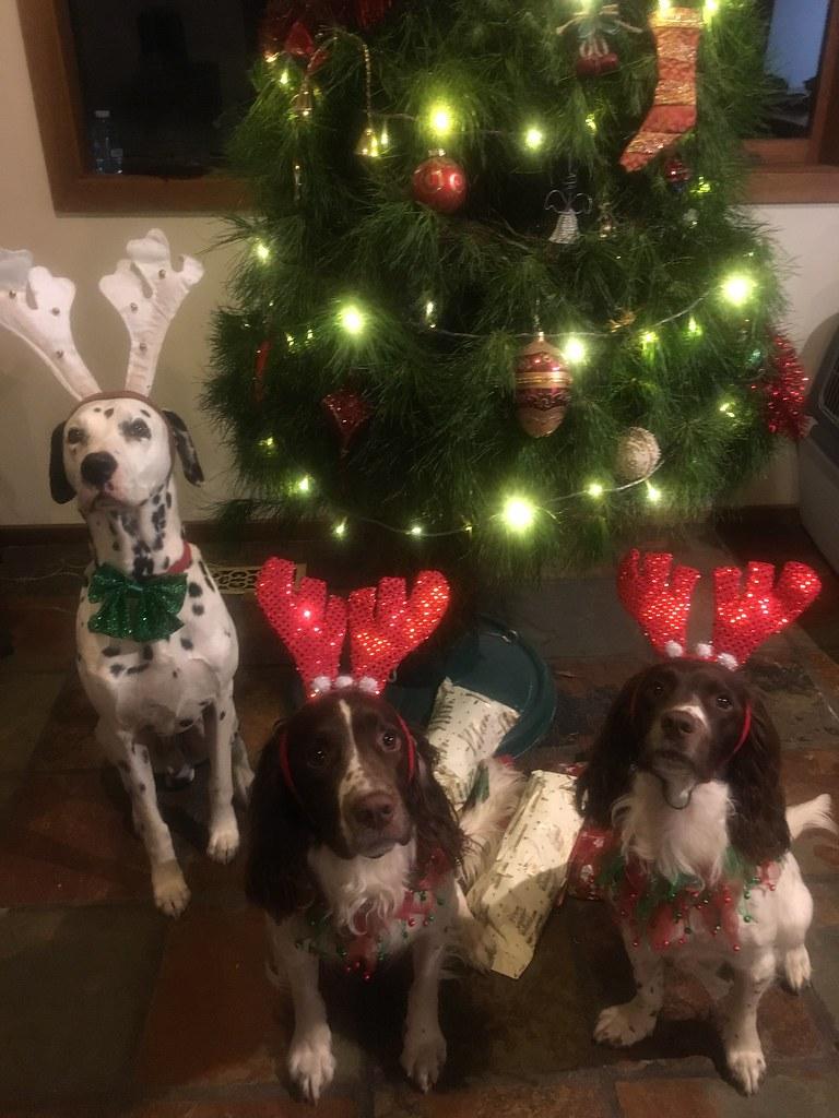 Thornfield Christmas 2017