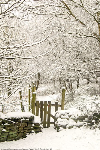 Gate at a Snowy North Dean Woods.