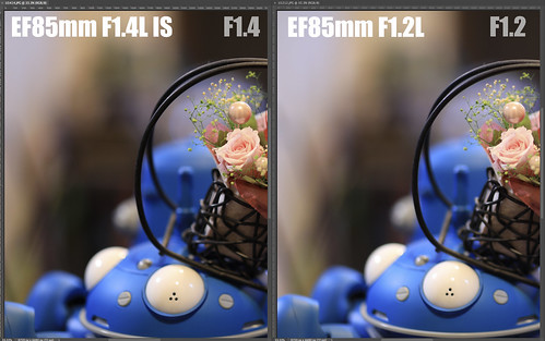 EF85mm F1.4L IS vs EF85mm F1.2L_07