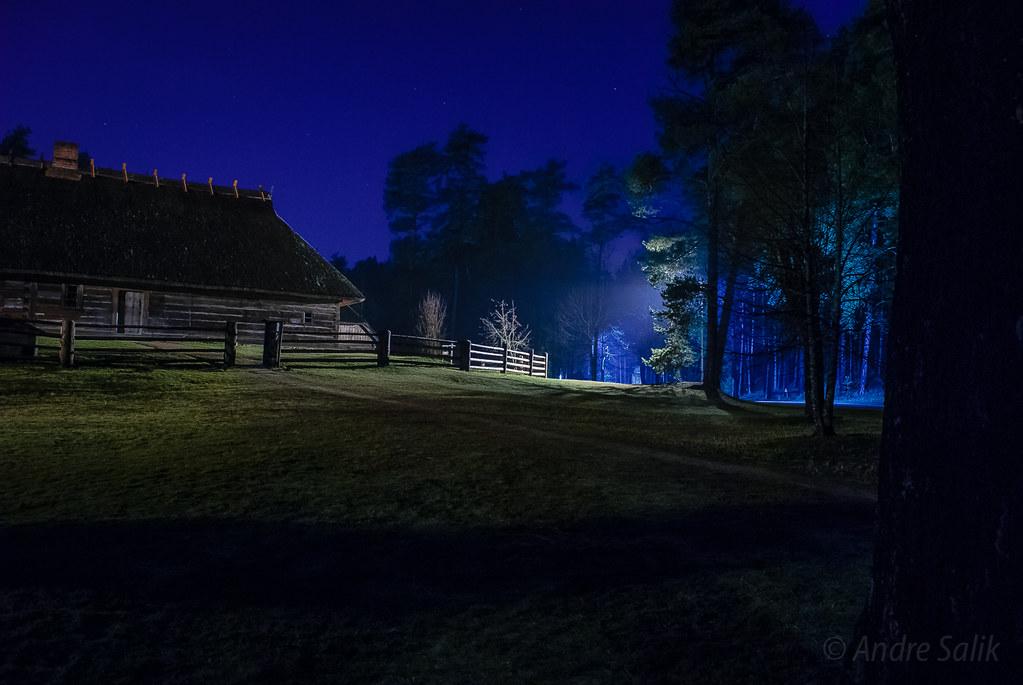 Great blue light! 19:18:31  DSC_4695