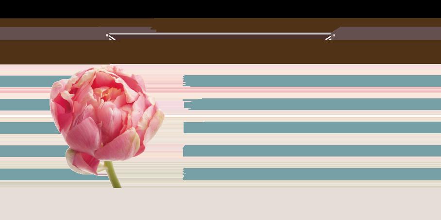 SOTERIA(化妝水/精華液) - 萃取大馬士革玫瑰