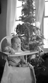 Mary or Sandy Lee with Christmas tree, Mountain Park, Alberta