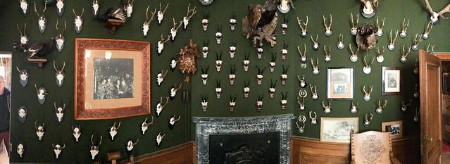 Antler trophy room panorama
