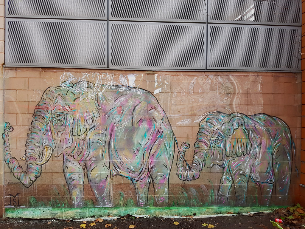 Elephant mural by Matt Shapira, Cardiff.