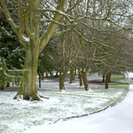 Snowy path at Ashton Park
