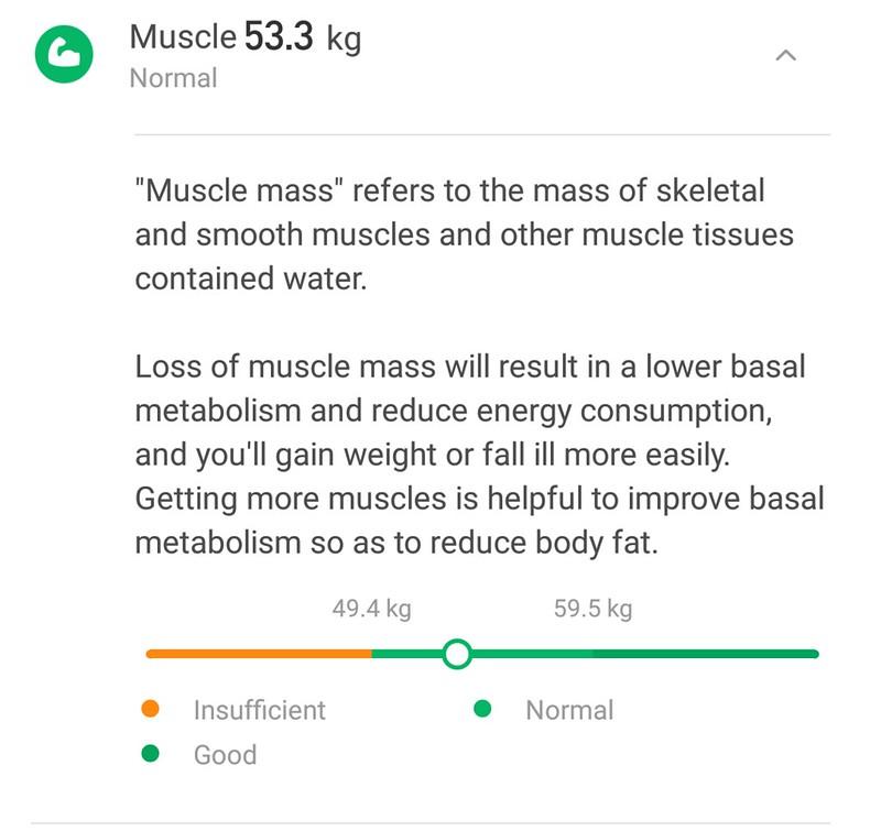 Xiaomi 体重計アプリ (12)