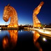 Golden Kelpies