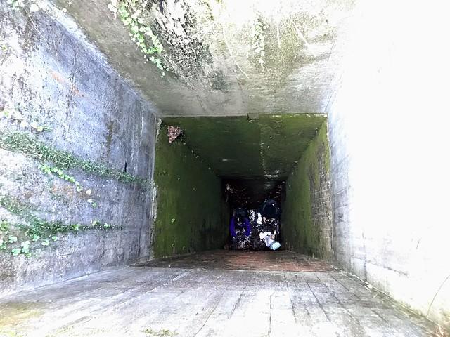 愛岐トンネル群 マルシェ広場 暗渠