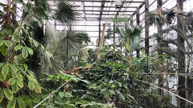 El jard n bot nico de gante for Jardin botanico medicinal