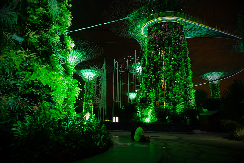 Gardens by the Bay   Night Layover in Singapore