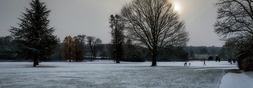 clumberpark nationaltrust snow snowy tree grass winter 2017 frost