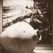 Mission Santa Barbara 9/10/17 #elcaminoreal #oldmissionsb #pottery #historicphoto