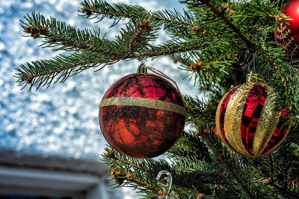 За полчаса до Католического Рождества. Самое, красивое, место, Сингапуре, Рождество, Новый, Flower