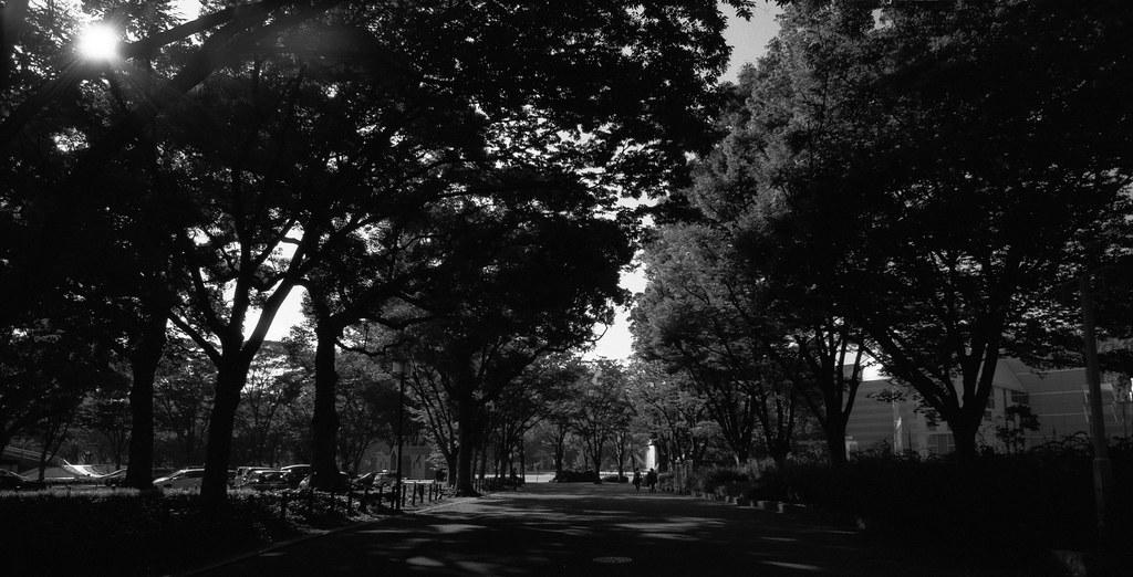 Leica M4 Super-Angulon-M21/3.4  Kodak T-MAX100