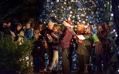 Centre Parcs Carolling - thetford Singers