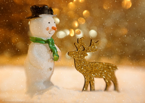 the snowman and the reindeer