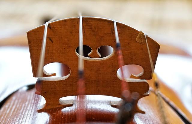 Violin, abridged (HMM!)