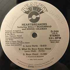 HEARTBREAKERS:WHAT DO BOYS KNOW ABOUT LOVE(LABEL SIDE-B)