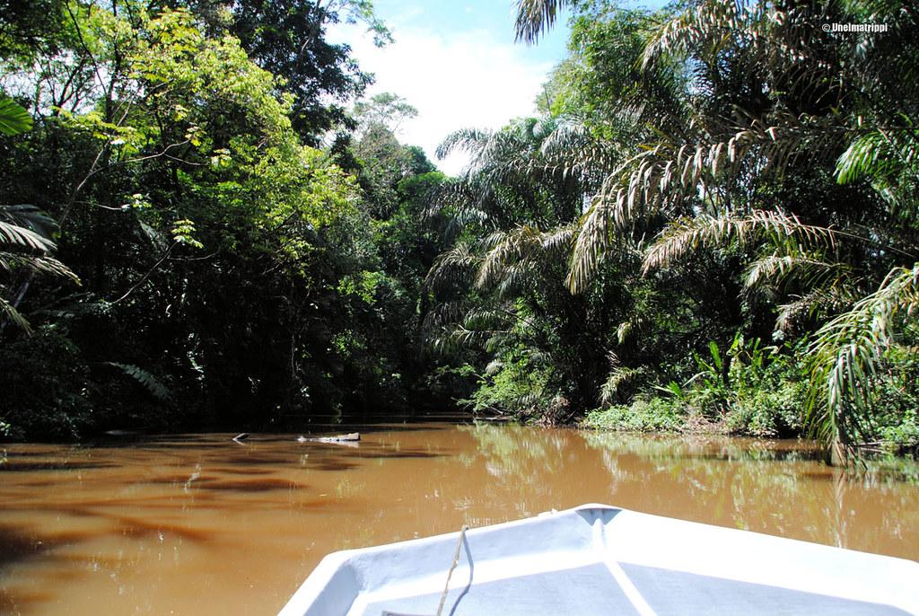 Veneen kyydissä, Tortuguero, Costa Rica