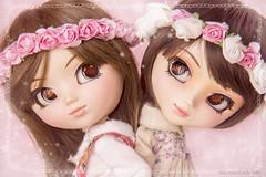 Tillie e Tikkie - The Twins - Suiseiseki e Souseseki