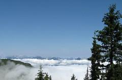 Alpbach 0052