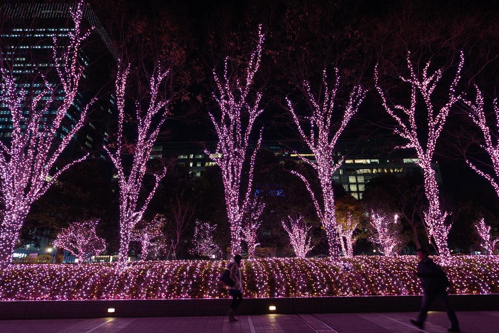 Shinjuku 新宿イルミネーション