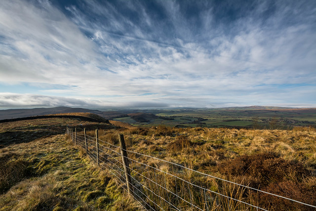 Dales Fence