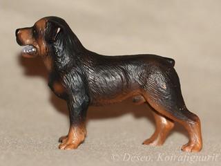 Rottweiler_wm
