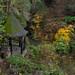 Pittencieff Summerhouse, Dunfermline