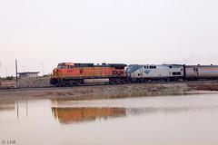 BNSF 5497, AMTK 81 leading train 11
