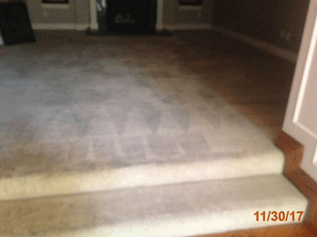 Property Preservation Carpet Cleaning | Los Angeles County Property Preservation